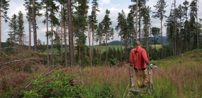 Facebook – Zachraňme lesy