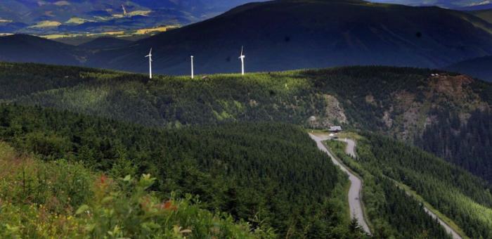 Deník – Lesnictví vJeseníkách čeká velká reorganizace, vyvolává obavy