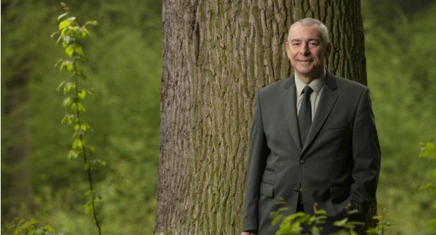 HN: Vytipujeme další významné stromy abudeme je chránit, slibuje ředitel Lesů ČR po aféře skoleného obřího dubu